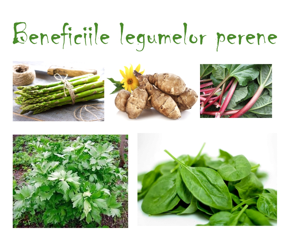 Beneficiile legumelor perene